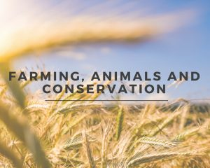 Farming, Animals and Convservation