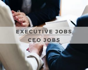 Executive and CEO Jobs